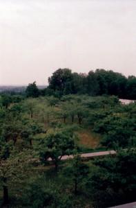 Blick hinunter vom Turmzimmer des Dachauer Schlosses aus während der Vollmond-Tafel der Poesie des Nymphenspiegel