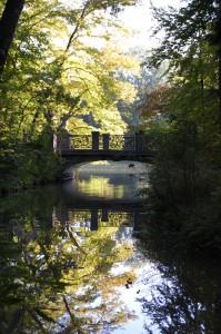 Brücken-Auge im Spiegelblick der Nymphenburger Schlosspark-Kanäle
